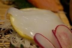 大漁盛り 甲イカ (HAMACHI!) Tags: tokyo 2018 japan ueno oysterbar diningrestaurant izakaya 佐渡島へ渡れ上野店 大漁盛り
