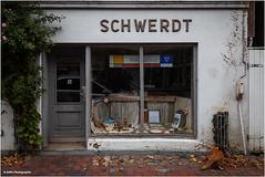 heißes Wasser für alle (geka_photo) Tags: gekaphoto ratzeburg schleswigholstein deutschland laden schaufenster katze