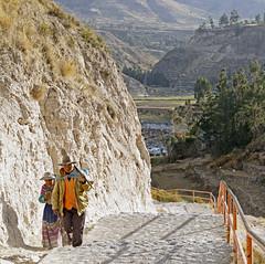 18 2266 - Pérou, Yanque (Jean-Pierre Ossorio) Tags: pérou yanque paysan retour chemin