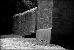 Dureil (Sarthe) (gondardphilippe) Tags: dureil sarthe maine paysdelaloire noiretblanc noir nb blanc blackandwhite bw black white église eglise church architecture bâtiment campagne extérieur graphique monochrome mur outdoor ombre patrimoine quiet rural texture vieux symétrie zen