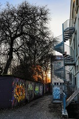 Graffiti Sundowner (orkomedix) Tags: graffiti canon eosr rf24105f4l munich import export compound space unlimited exchange communication beyond social cultural borders sundown light stairs tree
