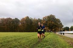 Haarlerbergloop 5 km (9)