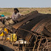 Issa woman making tent in a camp, Afar Region, Gewane, Ethiopia