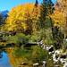 Golden Bishop Creek, Sierra Nevada, CA 10-18