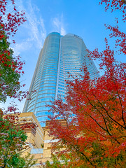 0417-R1 (gFKY) Tags: skyscraper tokyo roppongi koyo