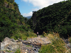 Remutaka 5 (Wozza_NZ) Tags: remutaka remutakaincline rimutakaincline rimutaka upperhutt wairarapa wellington newzealand nz mountainbiking bikepacking
