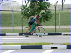 senior cyclist (j0035001-2) Tags: transport road people bicycle panning tracking exercise sports sport cycling