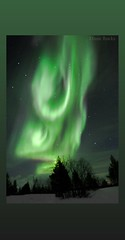 Significant other (Celebrating over 2 million views. Thank you) Tags: aurora memories northernlights finland magnificent magical green red polarlights auroraborealis aurorachasing kiss vivid lifeisamazing sharing blurry outoffocus outside nature mothernature exploringtheworld travel holiday