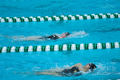 142A1358 (Roy8236) Tags: gmu american old dominion swim dive