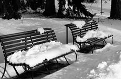 6Q3A9231 (www.ilkkajukarainen.fi) Tags: blackandwhite mustavalkoinen monochrome penkki bench seurasaari lumi snow winter talvi helsinki visit travel travelling happy life