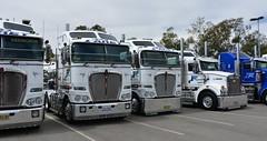 Farey (quarterdeck888) Tags: trucks truckies transport australianroadtransport roadtransport lorry primemover bigrig overtheroad class8 heavyvehicle highway road truckphotos nikon d7100 movingtrucks jerilderietrucks jerilderietruckphotos quarterdeck frosty expressfreight generalfreight logistics overnightfreight highwayphotos semitrailer semis semi flickr flickrphotos convoyforkids convoy waggaconvoyforkids2018 riverinaconvoyforkids riverinatruckshow truckshow workingtrucks transportexpo kenworth k200 farey