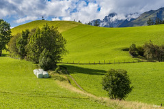Fascination of green (BIngo Schwanitz) Tags: 2017 ausflug bingoschwanitz bingos csd d500 ingoschwanitz kameras nationalpark nationalparkhohetauern nikkor nikon nikonafs16801284eed nikond500 objektive osttirol reisen virgen virgental outdoor österreich prägraten prägratenamgrosvenediger
