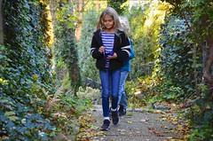 The Kids On The Secret Path (Joe Shlabotnik) Tags: foliage foresthills violet fall everett autumn queens foresthillsgardens november2018 2018 justviolet afsdxvrzoomnikkor18105mmf3556ged