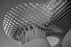 Metropol Parasol (serie - 06) (ricardocarmonafdez) Tags: sevilla ciudad city cityscape arquitectura architecture structure setas metropol parasol sunlight lights shadows contrast monocromo monochrome blackandwhite bn nikon d850 24120f4gvr
