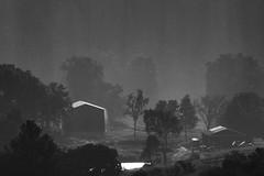 Downpour Rain (Klaus Ficker --Landscape and Nature Photographer--) Tags: rain thunderstorm storm downpour weather regen wetter sturm bw blackandwhite kentuckyphotography klausficker canon eos5dmarkiv usa kentucky