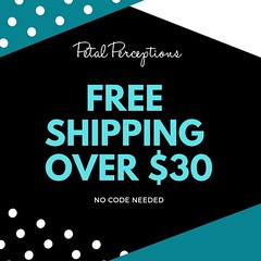Free shipping on all orders over $30. No code needed. :) #sale #freeshipping #blackfriday https://t.co/omjr8ZJgzP https://t.co/znFJNaQ33w (petalperceptions.etsy.com) Tags: etsy gift shop fashion jewelry cute