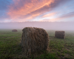 Foggy sunrise / 0226_0430 (Nikolay Obukhov) Tags: field rural countryside farmland meadow landscape sunrise clouds hay grass ural russia