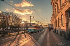 Evening Lights in Gothenburg (Fredrik Lindedal) Tags: train tram sunlight sunset sky skyline clouds cloudsstormssunsetssunrises street streetview gothenburg göteborg tree road