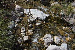 Flow (trainmann1) Tags: nikon d7200 amateur outside exterior outdoors fall 2018 vacation trip scenic beautiful co colorado west midwest water stream river rocks stones stone rock rush clear sun day daylight handheld