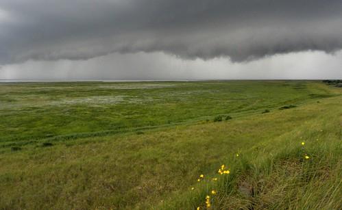 overzicht zuidkwelder bij naderend onweer