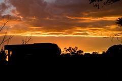 One beeeeautiful evening in October (Anna Gurule) Tags: orangeevening orange cloudyskies clouds nightsky nightclouds sunsetbackyardsunrisesantafe sunset