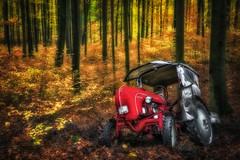 Porsche has fallen and it can't get up (Claudia G. Kukulka) Tags: porsche forest wald woods autumn fall foliage laub trees bäume tractor traktor