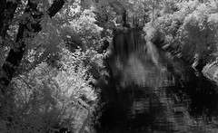 North Union Canal (arbyreed) Tags: arbyreed monochrome bw blackandwhite infrared ir 665nanometerinfrared blackandwhiteinfrared bwinfrared infraredconvertedcanon20d