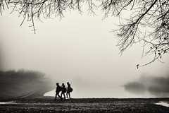 boys near lake (Pomo photos) Tags: boy boys child children people silhouette branch branches fog mist surreal misty river lake tree trees grass winter fujifilm fujifilmxa3 blackandwhite blackwhite bw monochrome mono mood sky clouds weather leaf leaves walking walk road sepia water landscape