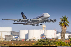 [LAX.2012] #Singapore.Airlines #SQ #Airbus #A380 #9V-SKD #awp (CHRISTELER / AeroWorldpictures Team) Tags: singapore airlines airbus a380841 cn008 eng 4x rr trent 970 engines reg 9vskd history aircraft first flight fwwse built site toulouse lfbo france delivered singaporeairlines sq sia configured f12c60y399 leased doric reconfigured f12c60w36y333 wfu stored lourdes lde a380 a388 plane aircrafts airplanes planespotting losangeles lax klax ca usa aeroworldpictures nikon d300s nikkor raw lightroom chr 2012