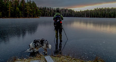 Partners in crime II (Esa Suomaa) Tags: inter lake nationalpark frozen mansbestfriend roughcollie bluemerle olympusomd
