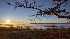 Capoluogo del cielo sereno (Cristiano Pelagracci) Tags: fog nebbia preggi italy umbria landscape paesaggio tree albero winter inverno