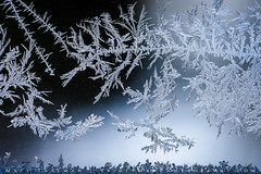 Fantasy Icescape (Matt Thalman - Valley Man Photography) Tags: fantasy frost ice icecrystals macro macrophotography microlandscape weather windowpane