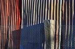 Long shadows, (holly hop) Tags: corrugated corrugatediron shed fence wall colours shadows fencefridays chickenwire afternoon sundown hff sedge808sfaves