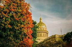 WV Fall Colors (RansomedNBlood) Tags: wv westvirginia charleston film 35mm kodakportra160 minolta600si autumn fall capitol trees capitoldome