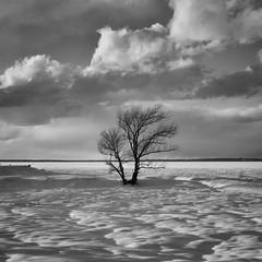 DSCF6796-Edit.jpg (mblonde12) Tags: britannia winter