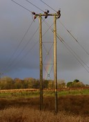 SC1 at Bothlin Burn, Bishop Loch (Brian Cairns) Tags: towers pylons electricity woodendess gartcosh gartloch brianbcairns rain incoming deviation power