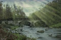 Reflejos (pedroramfra91) Tags: otoño autumn naturaleza nature exteriores outdoors puente bridge río river agua water arbol tree