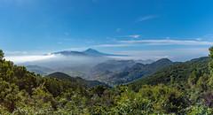 Blick zum Teide-Pano (+he-photography+) Tags: teneriffa teide panorama wolken berge meer bäume pflanzen siedlung
