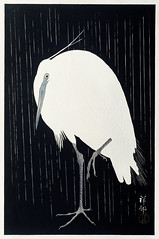 Egret in the rain (1925 - 1936) by Ohara Koson (1877-1945). Original from The Rijksmuseum. Digitally enhanced by rawpixel. (Free Public Domain Illustrations by rawpixel) Tags: pdproject21batch2x otherkeywords tagcc0 animal antique art asian bird drawing egret illustration japan japanese koson museum ohara oharakoson old paint rijksmuseum vintage
