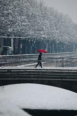 Sotto la neve (matteoguidetti) Tags: neve snow girl walking red umbrella ombrello white bianco nature urban street nevicata città parma italy urbanlandscape