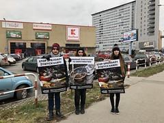 Kaufland Kraków1.d (Otwarte Klatki) Tags: aktywizm karpie streetwork