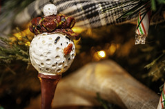 Mister Golfy Guy (Dad from Hell) Tags: 2018 canada canadarocks christmas flowersplants gary garypaakkonen kitchener paakkonen photography candy candycane christmaslights d300s golf home macro nikon ontario ornament tree trinket winter iamcanadian
