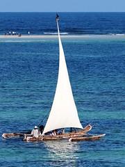 Diani Beach morning sail (BaobabBeachResort) Tags: deutschland beach beachlife diani dianibeach ukunda kenya kwale mombasa nairobi ocean holiday honeymoon