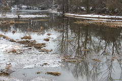 Reflets (Samuel Raison) Tags: ecopôleduforez reflet water etang eau neige glace hiver paysage landscape scenery nikond800 nikon nikon2870200mmafsvr