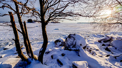 Rati Island, East-Helsinki, Finland. (Esa Suomaa) Tags: suomi scandinavia saaristo sun winter paradiseisland helsinki ice snow olympusomd
