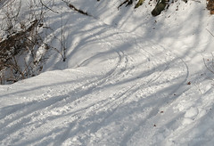 019Jan 29: Snow Tracks 3 (Johan Pipet 2M+ views) Tags: flickr snow sneh zima winter white route trail bratislava dubravka hlavica nature slovakia slovensko eu europe palo bartos bartoš canon g7x