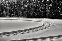 Kurvig (Helmut Reichelt) Tags: bw sw loipe kurvig böhmwiese geretsried heiter wolkig februar winter oberbayern bavaria deutschland germany leica leicam typ240 captureone12 silverefexpro2 leicasummilux50mmf14asph