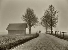 Nebelzeuxs (flori schilcher) Tags: schilcher baum wanderer stadel nebel fog