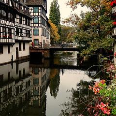 Europa está de luto - Estrasburgo - Europe is in mourning (nuska2008) Tags: nuska2008 nanebotas estrasburgo atentado olympussz30mr francia alsacia europa luto reflejos casas puente ärboles rio canal flores lapetitfrance