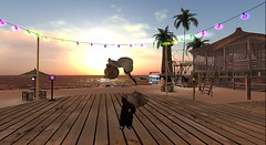 We decided that Dinkies have more fun :D  , we were right!! (skylerstormysky) Tags: firestorm secondlife secondlife:region=wwfunpark secondlife:parcel=wwfunpark secondlife:x=53 secondlife:y=220 secondlife:z=22 sl dinkies cat cats fun happy dancing sunset sky sea beach party couple avatars